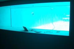 Water-tight-glass-in-swimming-pool